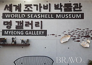 세계 조가비박물관의 환상적인 아름다움