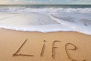 인생 선배가 말해주는 '인생 꿀팁 7'