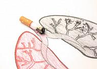 담배의 해악, 초등학교 때부터 가르치자