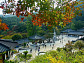 남한강 버드나무나루께길ㆍ양평 두물머리ㆍ용문사, 용문산의 가을 만끽하다(영상앨범 산)