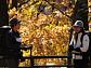 '영상앨범 산' 양주 불곡산 숲길 따라 가을 여행