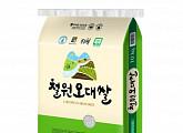 '홈플라이브 쿠폰' 마이홈플러스 홈플퀴즈 정답공개