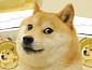 '일론머스크 픽' 도지코인 시세, 약 18% 하락…도지데이는 없었다