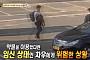 '동물농장', 만삭 차우 납치 범인 수배… 180cm·30대 남성
