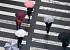 """[일기예보] 내일 날씨, 전국에 흐리고 비 '최대 100mm 이상'…'서울 아침 9도' """"우산 챙기세요!"""""""