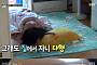 '동상이몽' 마산 가출소녀 경미, 어떻게 달라졌나? '귀가 시간 10시30분'