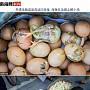 中폭염에 길거리서 파는 달걀이 저절로 부화