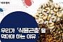 [카드뉴스 팡팡] 우리가 '식용곤충'을 먹어야 하는 이유