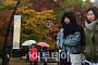 [일기예보] 오늘 날씨, 전국 구름 많고 출근길 '쌀쌀'…'서울 오전 10도'