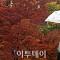 [일기예보] 서울날씨는 소나기에 '쌀쌀'… 고속도로 곳곳서 정체