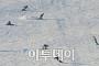 [포토] 주말맞아 스키장 찾은 사람들