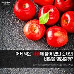 """[카드뉴스 팡팡] """"어제 먹은 사과에 붙어 있던 숫자의 비밀을 알려줄까?"""""""