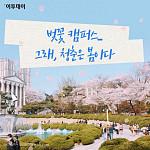 [카드뉴스 팡팡] 벚꽃 캠퍼스...그래, 청춘은 봄이다
