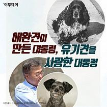 [카드뉴스 팡팡] 애완견이 만든 대통령, 유기견을 사랑한 대통령