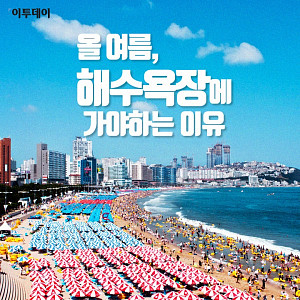 [카드뉴스 팡팡] 올 여름, 해수욕장에 가야하는 이유