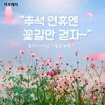 """[카드뉴스 팡팡] """"추석 연휴엔 꽃길만 걷자~"""""""