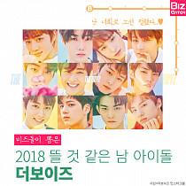 [카드뉴스] 비즈돌이 뽑은 2018 뜰 것 같은 남 아이돌 1위 '더보이즈'