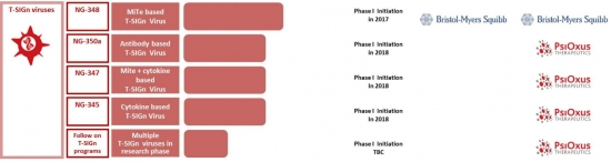 ▲T-SIGn플랫폼 기술을 활용한 다양한 파이프라인 진행현황출처: 회사 홈페이지