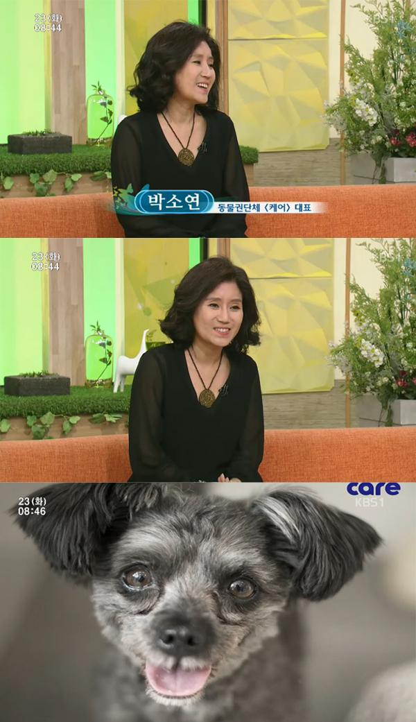 ▲'아침마당' 박소연 '케어' 대표(사진=KBS1)