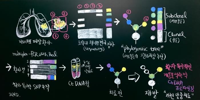 (ctDNA의 계통학적 추적)