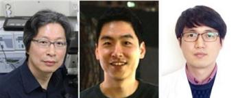 ▲(좌)고규영 IBS 혈관연구단장 (중)김재령 연구원 (우)박대영 연구원