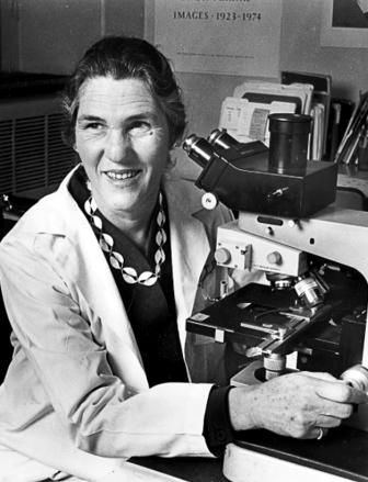 ▲그림 3 : 좌:염색법의 개선에 따라 이제 다른 염색체를 다른 밴드패턴으로 구분할 수 있게 되었다. Sumner, A.T. Evans, H.K. Buckland, R.A., Nature New Biology, 1971 우: 필라델피아 염색체가 22번 염색체의 일부분이 잘려 9번 염색체로 붙어 생성된다는 것을 밝혀낸 자넷 로울리 (Janet D. Rowley 1925-2013)