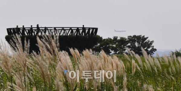 ▲서울 마포구 하늘공원을 찾은 시민들이 노랗게 물들기 시작한 억새밭을 거닐며 다가오는 가을의 정취를 만끽하고 있다. 이동근 기자 foto@(이투데이DB)