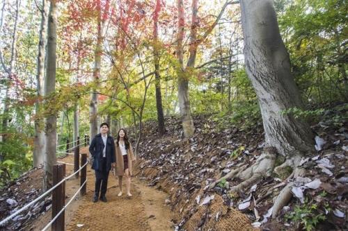 ▲에버랜드 내 숲속 산책로.