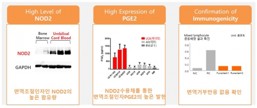 ▲면역특성화 제대혈 유래 줄기세포 특징 (자료: 강스템바이오텍 제공)