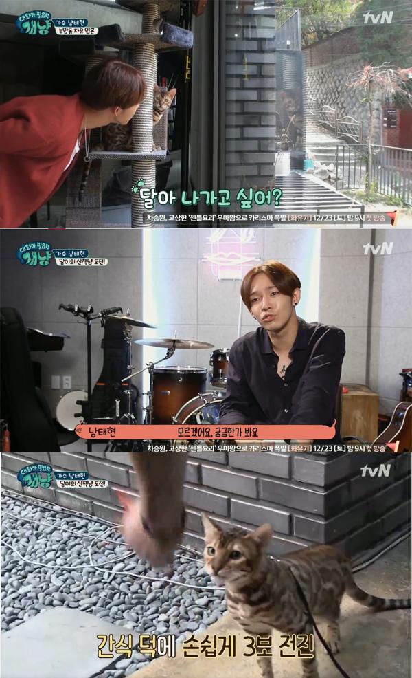 ▲'대화가필요한개냥' 남태현(사진=tvN)
