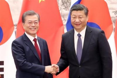 ▲문재인 대통령과 시진핑 중국 국가주석이 지난해 12월14일 오후 베이징 인민대회당 서대청에서 열린 MOU 서명식 후 악수를 하고 있다. 연합뉴스