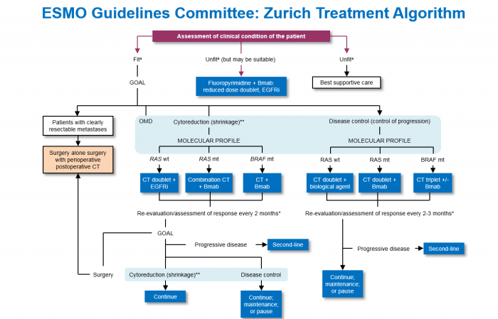 ▲Figure-2. ESMO Guidelines Committee: Zurich Treatment Algorithm