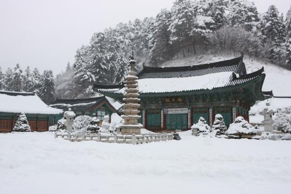 ▲사진제공=한국관광공사(월정사)