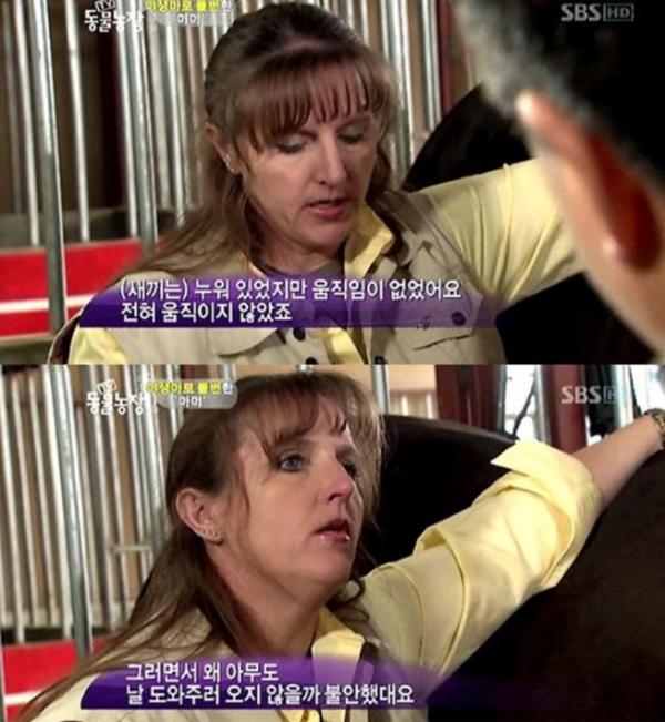 ▲'동물농장' 애니멀커뮤니케이터 하이디(사진=SBS)