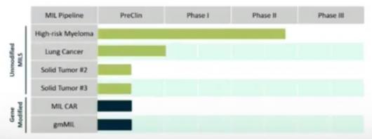 ▲WindMIIL 파이프라인 진행현황 (출처: Cell & Gene Meeting 발표자료)
