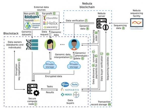 ▲네불라 지노믹스가 공개한 기술 백서 문서.(https://www.nebulagenomics.io/assets/documents/NEBULA_whitepaper_v4.51.pdf)
