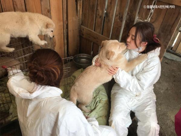 ▲가수 구하라(사진=동물보호시민단체 카라 )