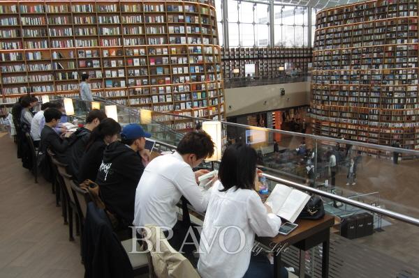 ▲별마당도서관 2층에 있는 책 읽기 편한 조명이 아름다운 공간.(김진옥 동년기자)