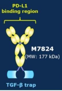 ▲M7824 구조