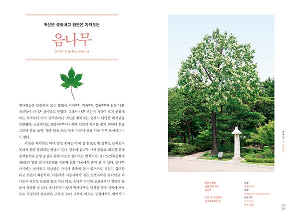 ▲'궁궐의 우리 나무' 책 펼친면(눌와 제공)