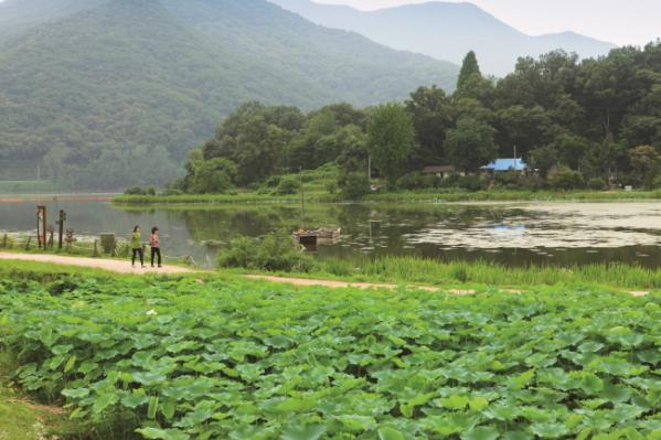 ▲남양주 다산길(황안나 도보여행가)