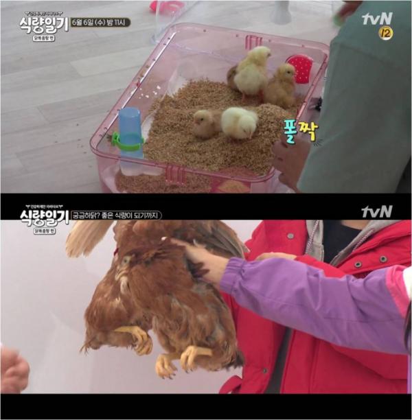 (출처=tvN '식량일기' 캡처.)
