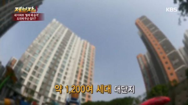 (출처= KBS '제보자들' 캡쳐)