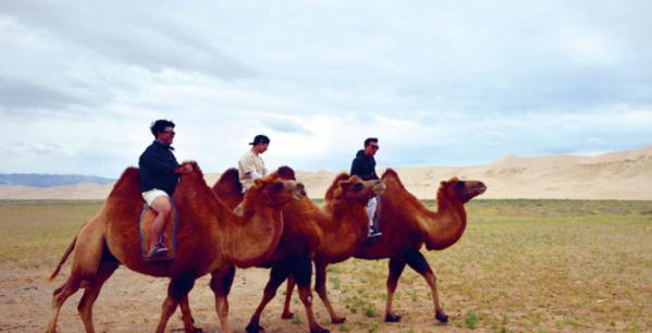 ▲사막 낙타 체험(몽골리아세븐데이즈 제공)