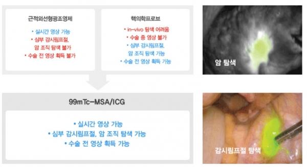 ▲셀비온의 형광영상유도수술용 조영제 개념. 셀비온 홈페이지.