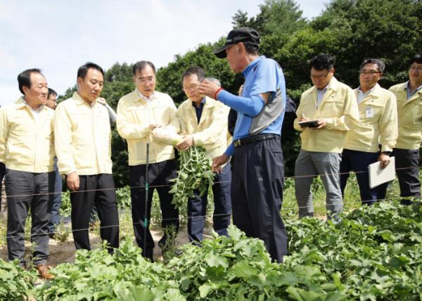 ▲이개호 농림축산식품부 장관(앞줄 세 번째)이 15일 강원도 평창 대관령을 찾아 농작물 수급 상황을 점검했다.(농림축산식품부)