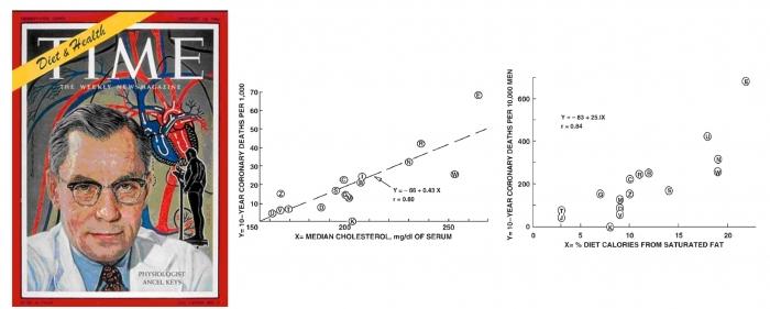 ▲그림 3: 미네소타 대학의 영양생리학자 안셀 키스 (Ancel Keys)는 다른 식습관과 생활패턴을 가진 7개국의 16개 코호트를 대상으로 한 연구를 통하여 혈중 콜레스테롤의 농도와 포화지방으로부터 얻는 칼로리가 심혈관 질환에 의한 사망과 연관관계가 있다는 것을 보였다. 이러한 연구를 근거로 안셀 키스는 심혈관질환을 식단 조절에 의해서 예방할 수 있다는 주장, 즉 '지중해 식단' (Mediterranean diet) 에 의한 심혈관 질환 예방을 설파하였다.