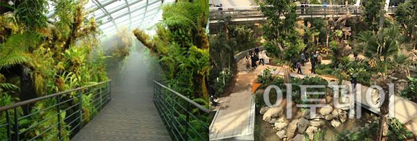 ▲좌측이 보타닉 공원 실내 식물원, 우측 서울식물원 주제원.(출처=싱가포르 보타닉 가든 홈페이지, 이투데이 DB.)