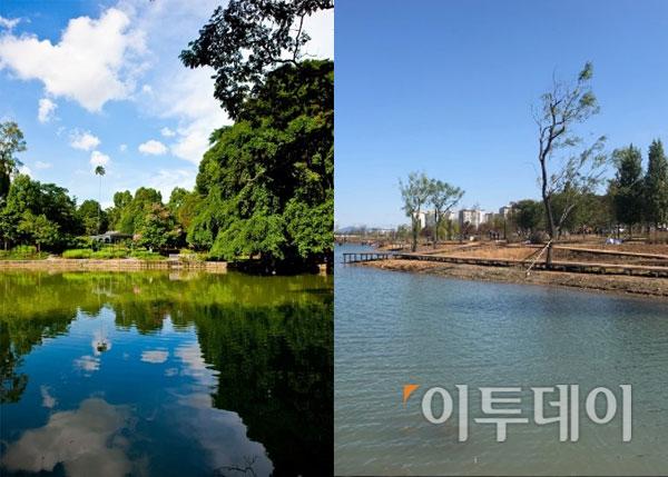 ▲좌측이 싱가포르 보타닉 가든, 우측 서울식물원 호수 전경.(출처=싱가포르 보타닉 가든 홈페이지, 이투데이 DB.)