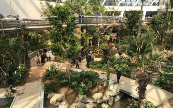 ▲서울식물원 온실에는 세계 12개 도시의 식물이 그대로 전시돼 있으며, 상파울로·보고타·하노이·자카르타의 식물을 전시해 둔 열대관과 샌프란시스코·바르셀로나·로마·아테네·이스탄불·타슈켄트·케이프타운·퍼스의 식물을 전시해 둔 지중해관으로 구분된다.